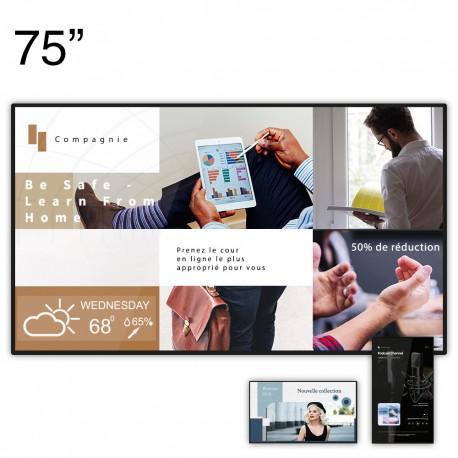 """Ecran d'affichage dynamique 4K CM Series - 75"""""""